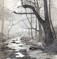 River Sett, Hayfield